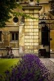 Escena clásica de la Universidad de Cambridge Fotos de archivo libres de regalías
