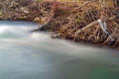 Escena con la contaminación del riverbank por completo de la basura fotografía de archivo libre de regalías