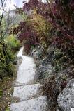 Escena con las escaleras de piedra abajo en el otoño un parque Foto de archivo libre de regalías