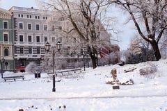 Escena con los árboles helados en parque de la ciudad Fotografía de archivo