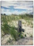 Escena costera de la duna fotos de archivo