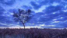 Escena crepuscular en una tierra tranquila, Goirle, Países Bajos Fotos de archivo libres de regalías
