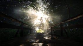escena 3d: puente en el bosque Imagenes de archivo
