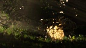 escena 3d: roca en el bosque Foto de archivo