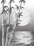 Escena de bambú monocromática Libre Illustration