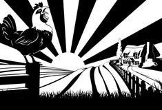 Escena de cacareo de la casa de la granja del gallo Foto de archivo