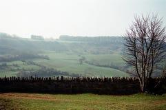 Escena de Cotswolds en invierno foto de archivo libre de regalías