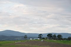 Escena de igualación pacífica del campo y del mountainrange del valle de Yarra cerca de Melbourne Australia fotos de archivo libres de regalías