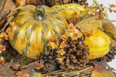 Escena de la calabaza de la cosecha de la caída Imagen de archivo libre de regalías