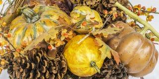 Escena de la calabaza de la cosecha de la caída Foto de archivo libre de regalías