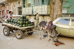 Escena de la calle con la ciudad vieja Egipto de El Cairo del vendedor de la sandía Imagenes de archivo