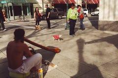 Escena de la calle con la pequeña chihuahua freaking hacia fuera de músico de la calle foto de archivo