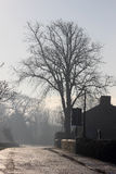 Escena de la calle del pueblo del invierno - sol en el camino helado Imágenes de archivo libres de regalías