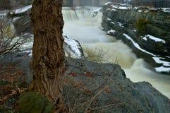 Escena 2 de la cascada Imagenes de archivo