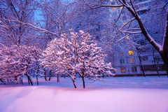 Escena de la ciudad del invierno de la noche Imagen de archivo