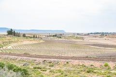 Escena de la granja cerca de Vredendal imágenes de archivo libres de regalías