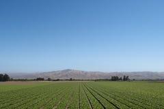 Escena de la granja de California Foto de archivo libre de regalías