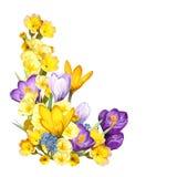 Escena de la historieta con las flores hermosas y coloridas en el fondo blanco ilustración del vector