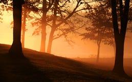 Escena de la madrugada foto de archivo libre de regalías