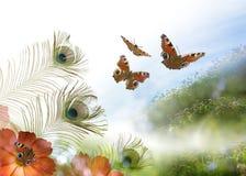 Escena de la mariposa del pavo real Fotos de archivo