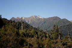 Escena de la montaña Fotografía de archivo libre de regalías