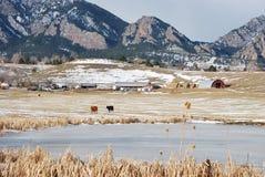 Escena de la montaña de Colorado Foto de archivo libre de regalías
