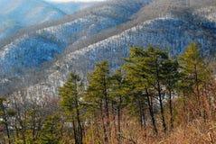 Escena de la montaña de Ridge azul Imagen de archivo libre de regalías