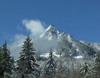 Escena de la montaña de WA Fotos de archivo