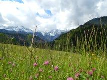 Escena de la montaña en Garmisch, Alemania Fotografía de archivo libre de regalías