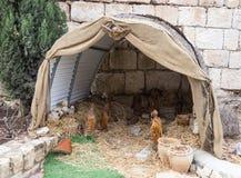 Escena de la Navidad de las muñecas cerca de la iglesia católica griega en ilya del ` del MI en Israel Imágenes de archivo libres de regalías