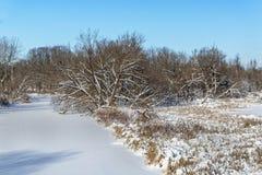 Escena de la nieve Fotografía de archivo libre de regalías