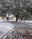 Escena de la nieve de la acera Imagenes de archivo