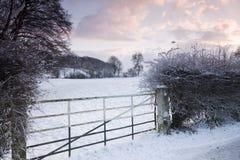 Escena de la nieve de la salida del sol del invierno Foto de archivo libre de regalías