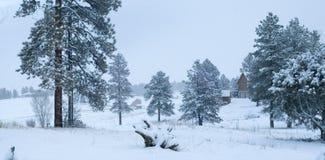 Escena de la nieve del invierno Imagenes de archivo