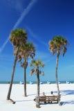 Escena de la playa con las palmas Fotos de archivo libres de regalías