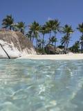 Escena de la playa con las palmeras Imágenes de archivo libres de regalías