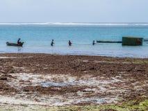 Escena de la playa de Diana Fotos de archivo
