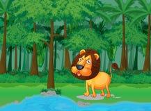 Escena de la selva tropical libre illustration