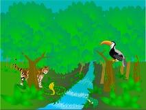Escena de la selva tropical Fotografía de archivo