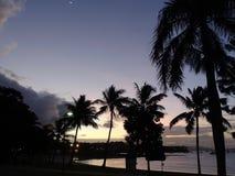 Escena de la tarde de la playa tropical en claro de luna en una laguna Foto de archivo libre de regalías