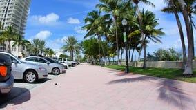 Escena de Miami Beach con las palmeras metrajes
