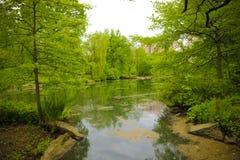 Escena de New York City Central Park Imagen de archivo libre de regalías