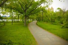 Escena de New York City Central Park Imágenes de archivo libres de regalías