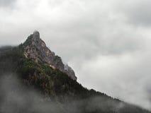 Escena de niebla de la montaña Imágenes de archivo libres de regalías