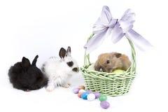 Escena de Pascua Fotos de archivo libres de regalías