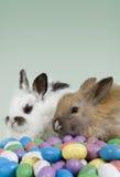 Escena de Pascua Foto de archivo libre de regalías