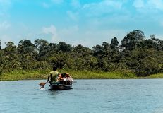 River scene in the Amazon of Ecuador in the middle of leafy vegetation stock image