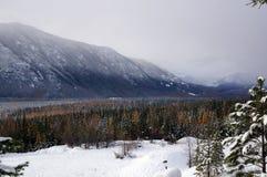 Escena del bosque de la montaña del invierno Imágenes de archivo libres de regalías