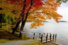 Escena del color de la caída Foto de archivo