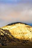 Escena del desierto en caída Fotografía de archivo libre de regalías